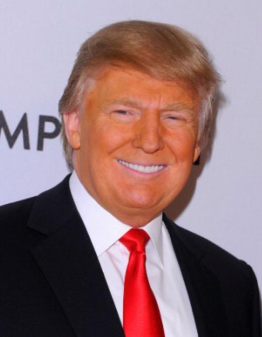 Image result for orange trump